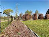 Foto 24 : villa te 3454 GEETBETS (België) - Prijs € 540.000