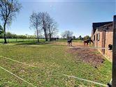 Foto 30 : villa te 3454 GEETBETS (België) - Prijs € 540.000