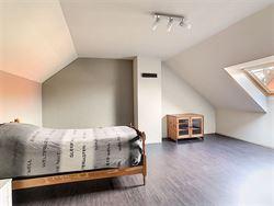 Image 15 :  IN 3350 LINTER (Belgium) - Price 498.000 €