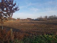 Foto 8 : Nieuwbouw Den Bruul te HULSHOUT (2235) - Prijs