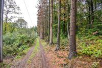 Image 21 : Terrain à 4052 BEAUFAYS (Belgique) - Prix 365.000 €