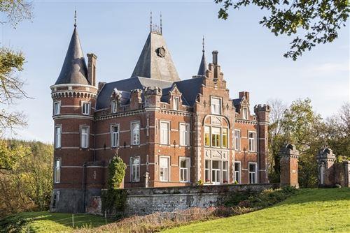 Château a vendre à MOZET (5340)