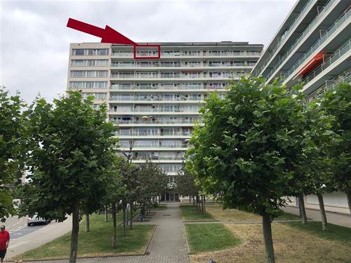 Appartements a vendre à EVERE (1140)