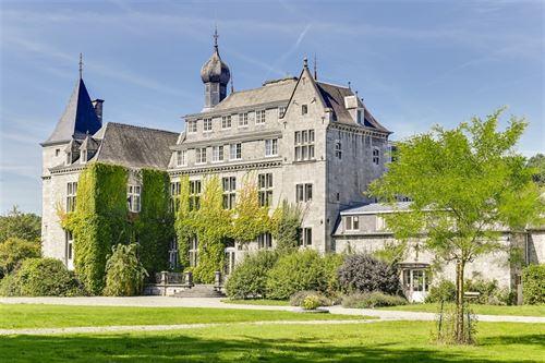 Kasteel te koop te ERMETON-SUR-BIERT (5644)