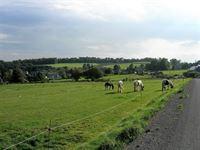 Image 1 : Terrain à bâtir à 6830 BOUILLON (Belgique) - Prix 36.500 €