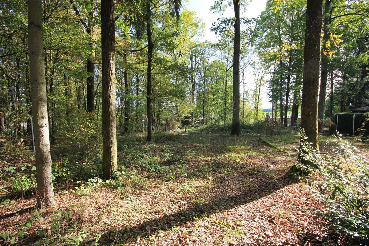 Image 4 : Terrain à bâtir à 5600 ROLY (Belgique) - Prix 30.000 €