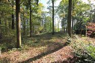 Image 5 : Terrain à bâtir à 5600 ROLY (Belgique) - Prix 30.000 €