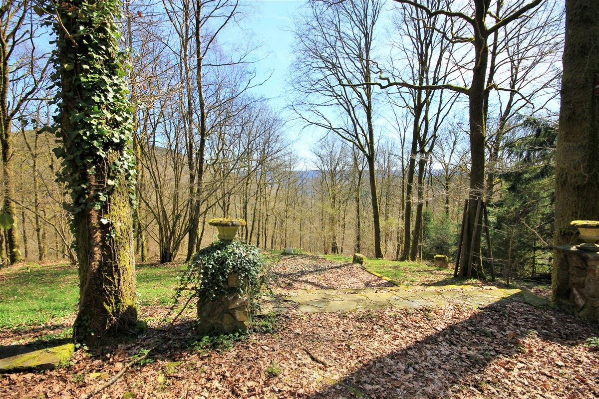 Image 12 : Maison à 5670 OIGNIES-EN-THIÉRACHE (Belgique) - Prix 199.000 €