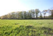 Image 3 : Terrain à bâtir à 5600 VILLERS-LE-GAMBON (Belgique) - Prix 44.000 €