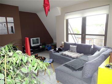 Appartement te 9700 OUDENAARDE (België) - Prijs € 650