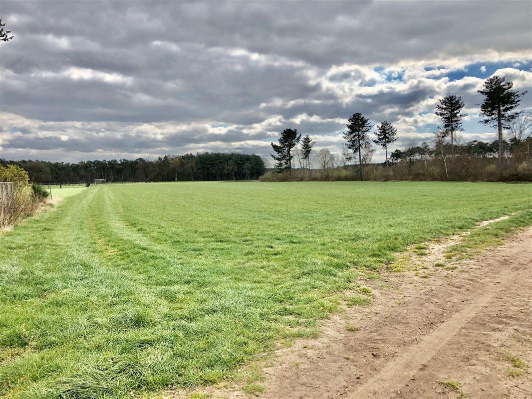 Foto 1 : Landbouwgrond te 2275 LILLE (België) - Prijs € 110.000