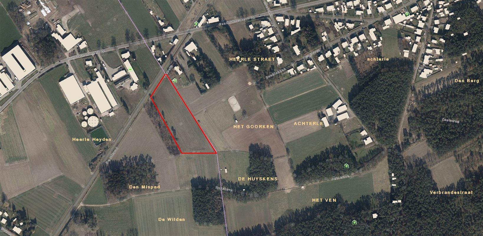 Foto 4 : Landbouwgrond te 2275 LILLE (België) - Prijs € 110.000